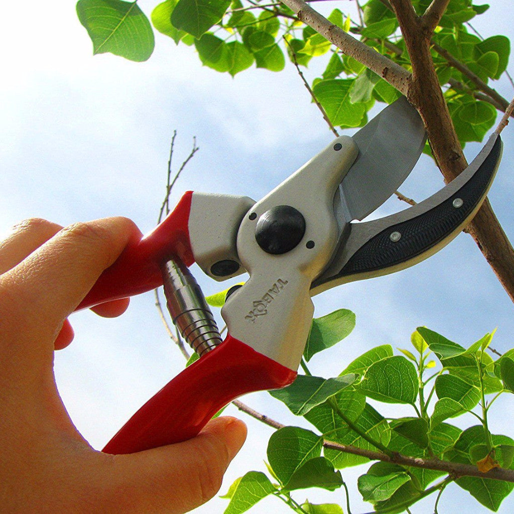 Tabor Tools S3 Classic Pruning Shears - Based on Felco 2