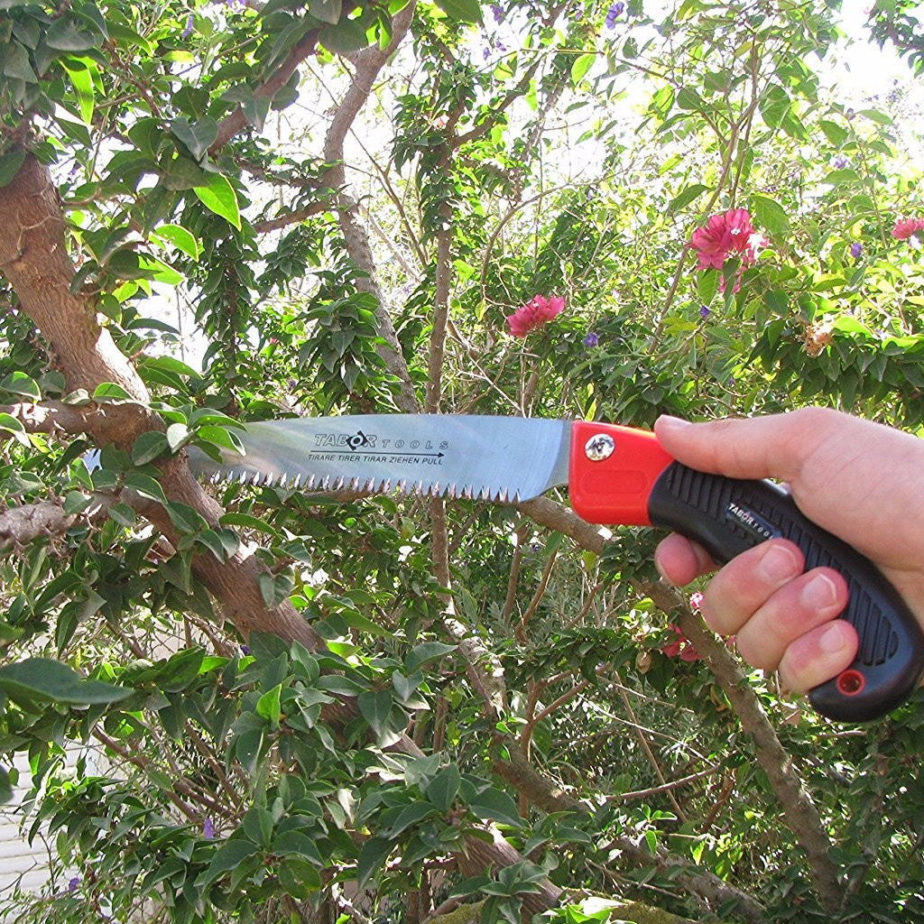 Tabor Tools Pruning Saw With Sheath