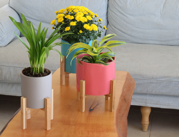 Ceramic Planters on Bamboo Stand