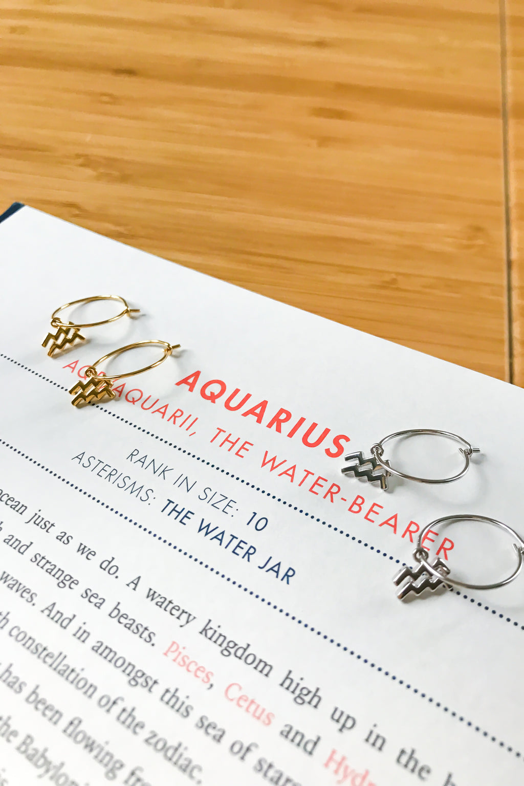 Aquarius mini hoop earrings