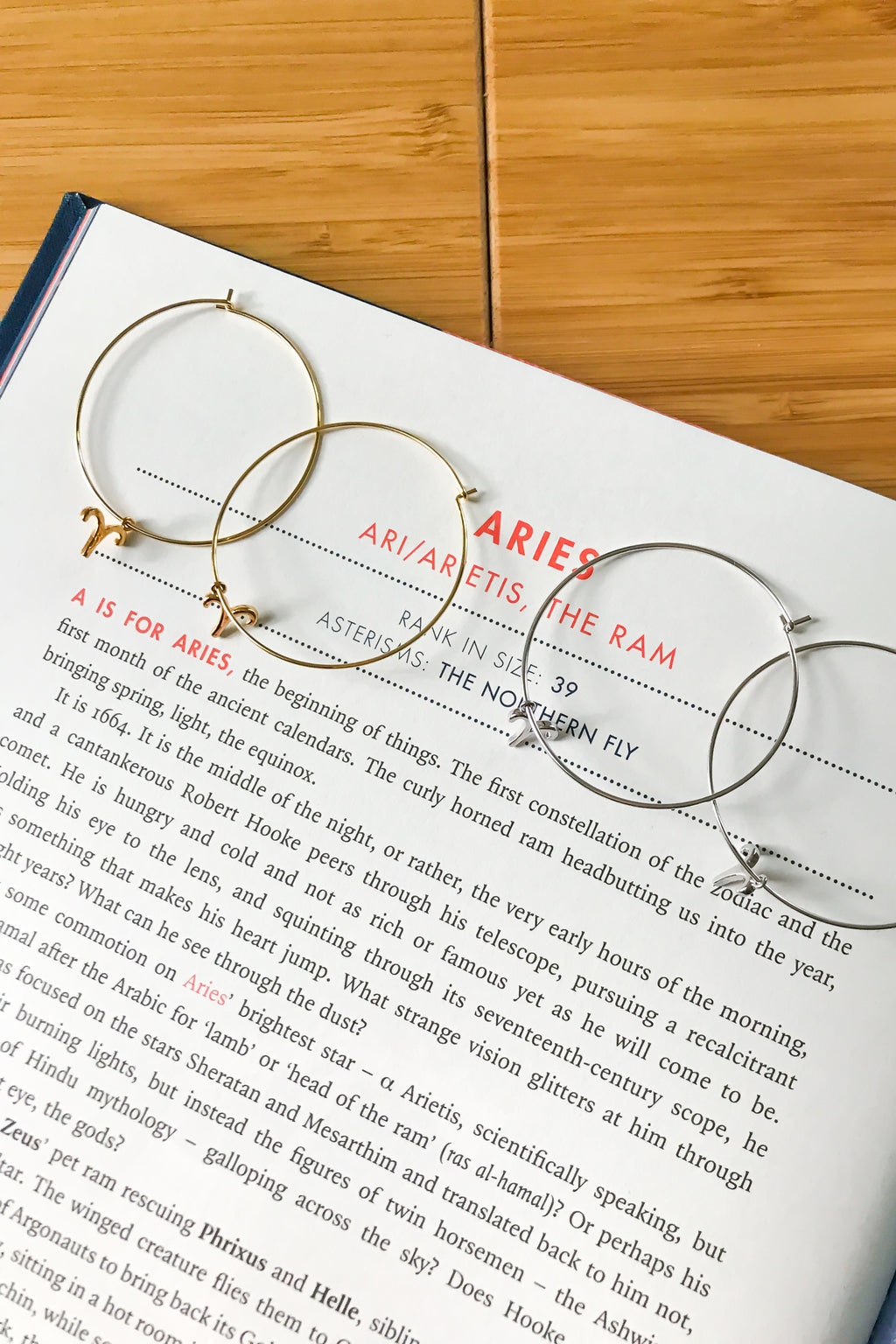 Aries mega hoop earrings