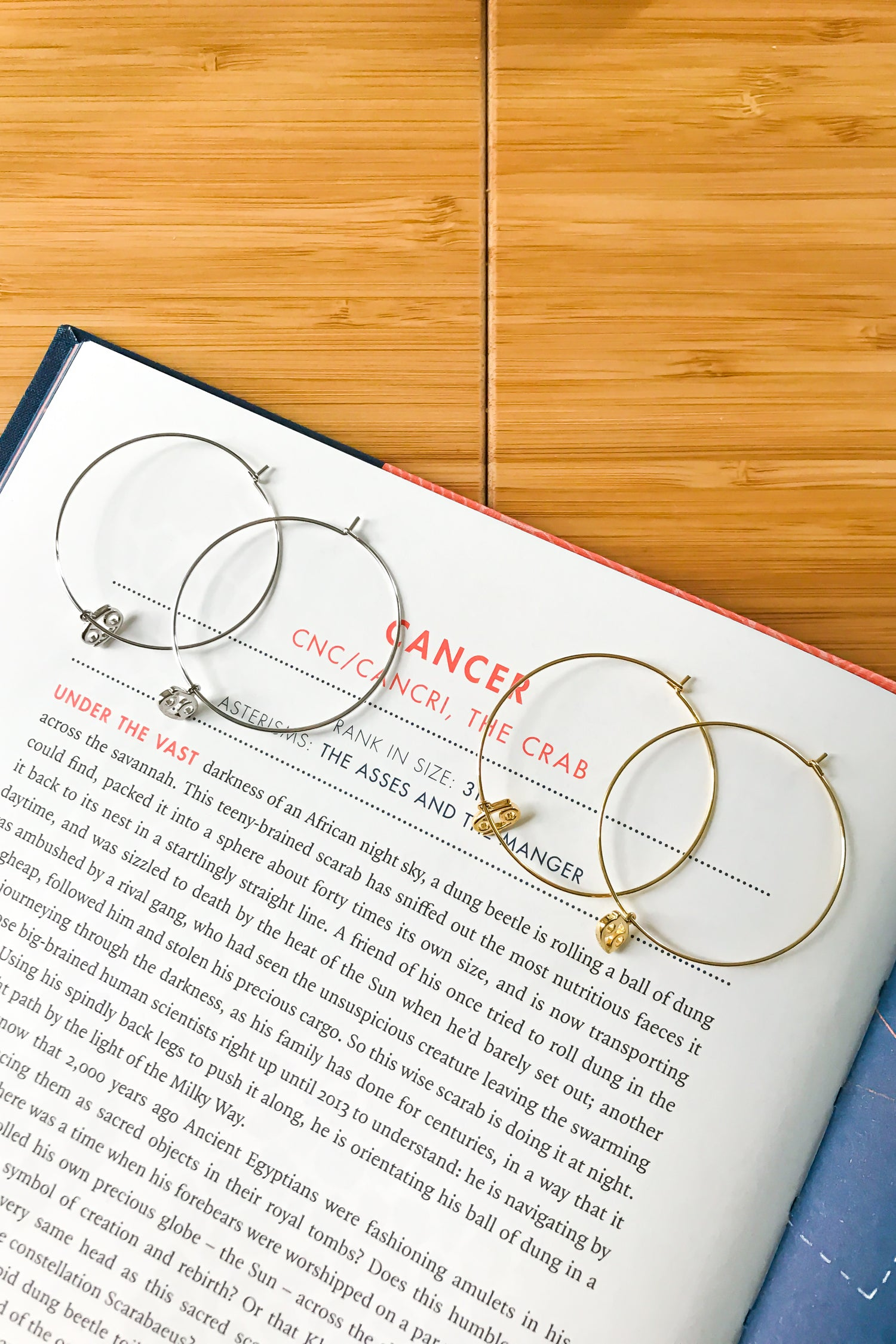 Cancer mega hoop earrings