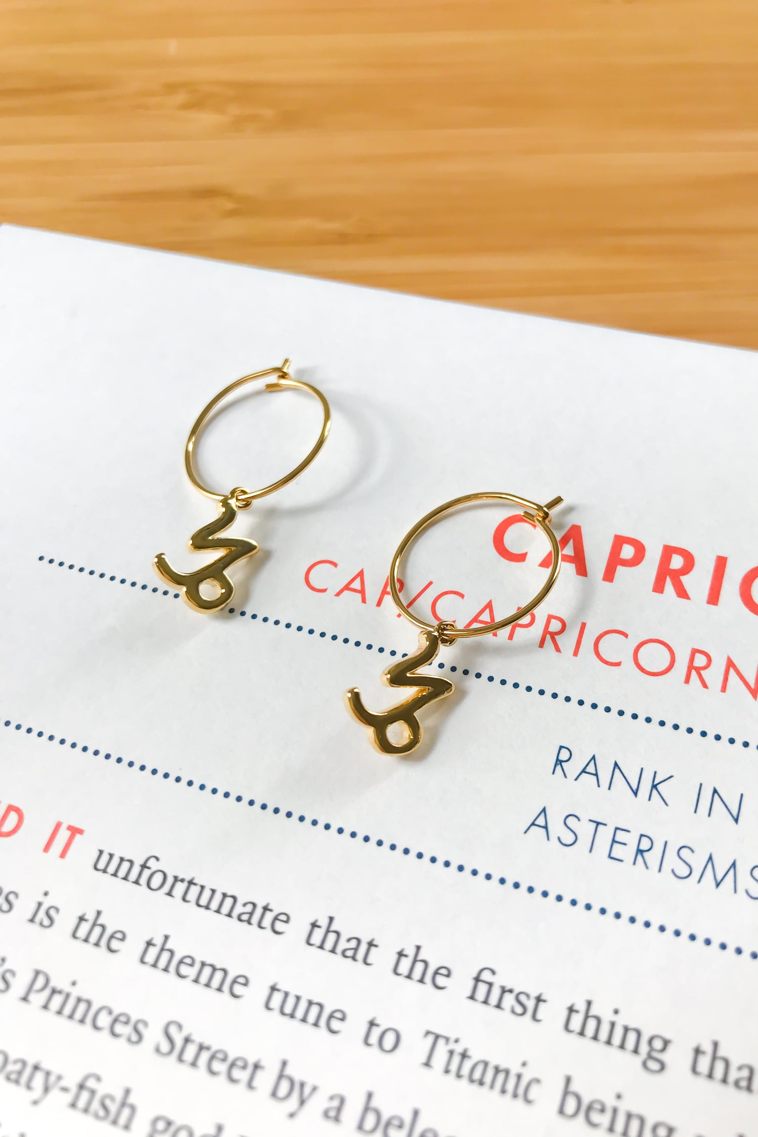 Capricorn mini hoop earrings