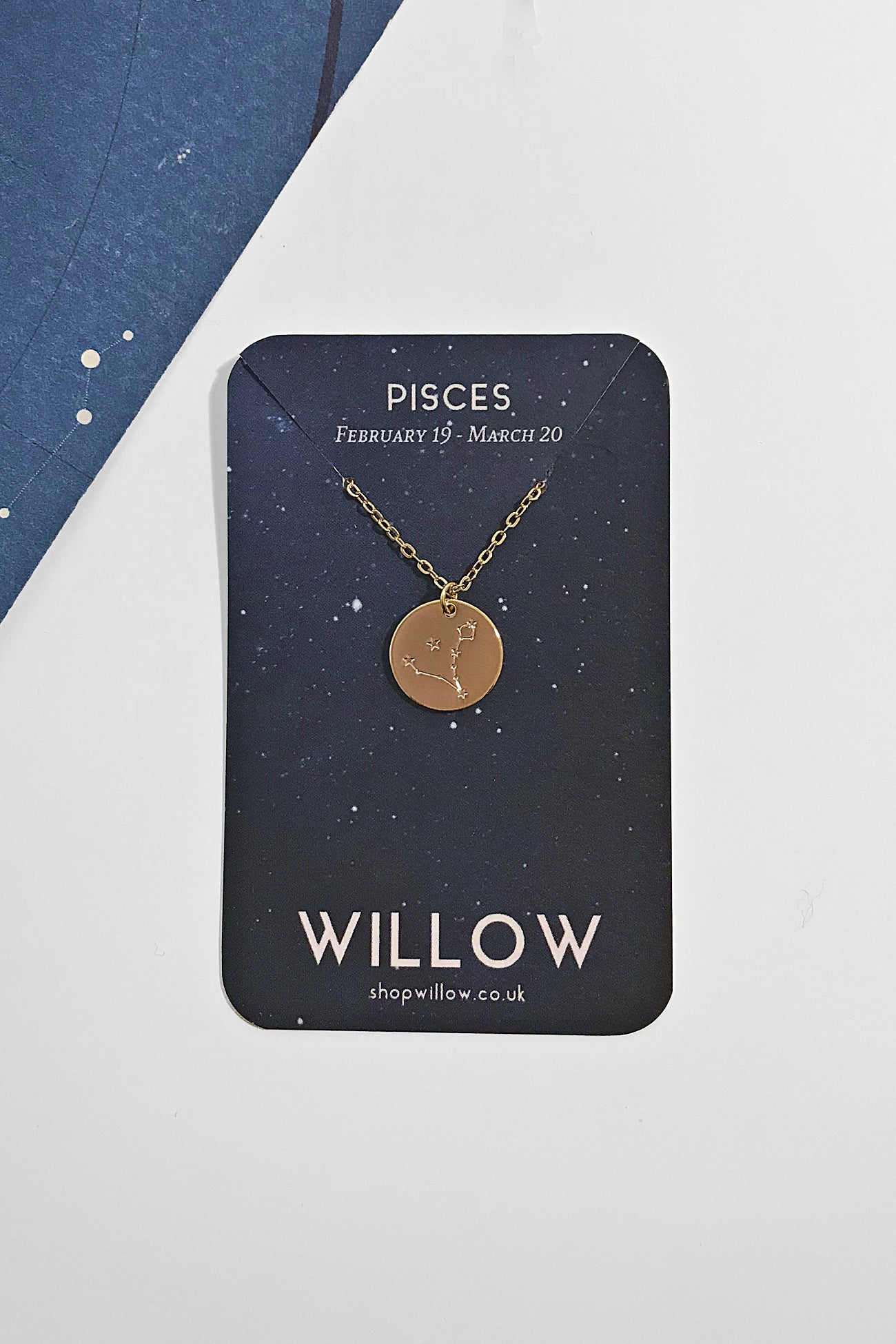Pisces constellation coin necklace