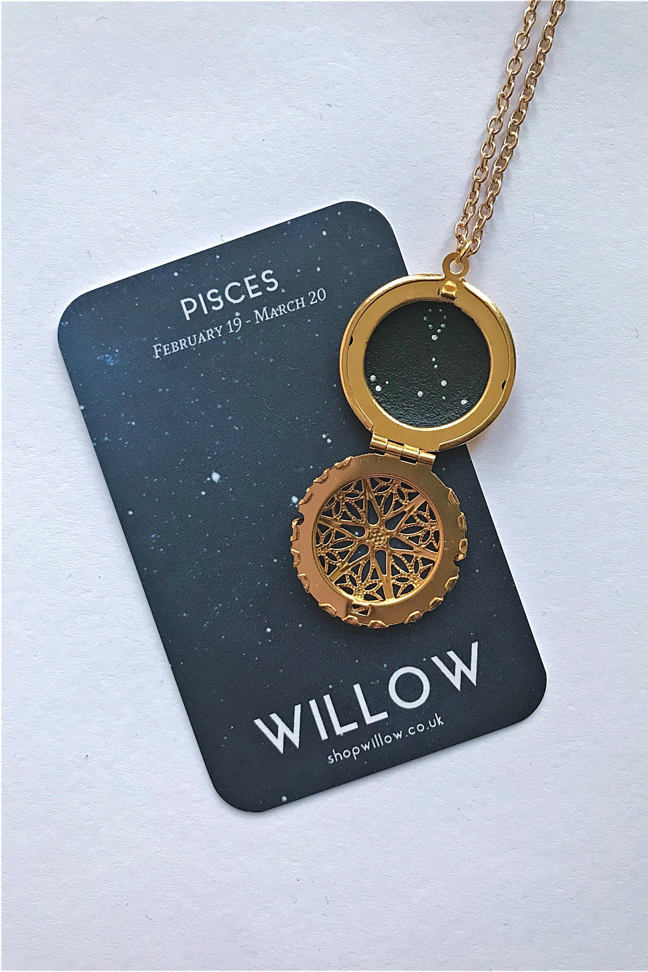 Pisces constellation locket