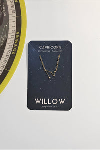 Capricorn mini constellation necklace