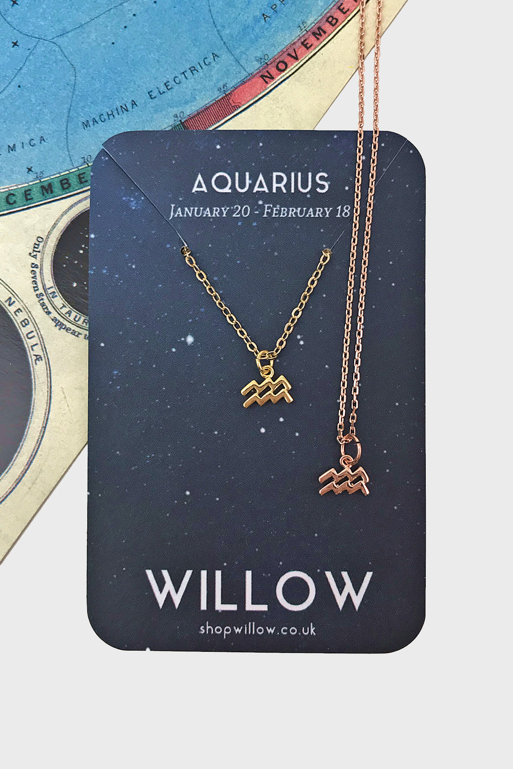 Aquarius mini symbol necklace
