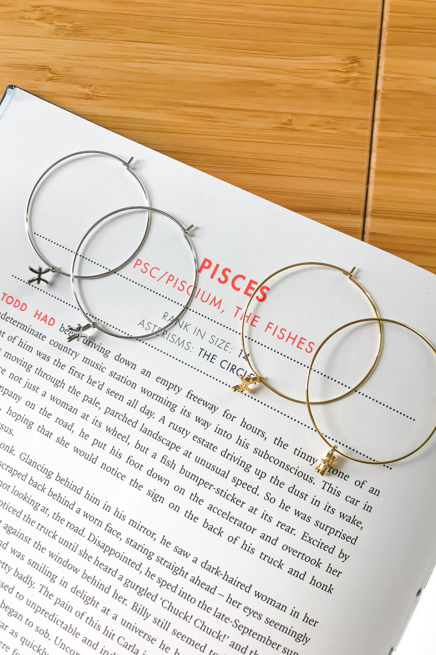 Pisces mega hoop earrings