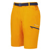 Montane-Men's Dyno Stretch Shorts-Men's Legwear-Authentic Orange-S-Gearaholic.com.sg