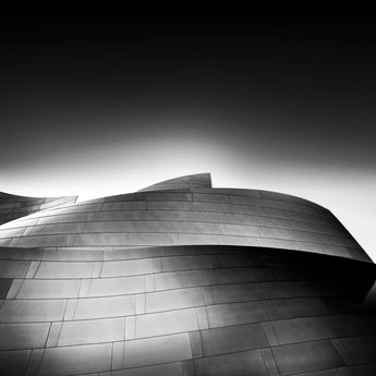 Walt Disney Concert Hall #4, Los Angeles