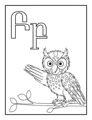 Armenian alphabet letter B shown on a white background with an owl below the letter for kids to color.