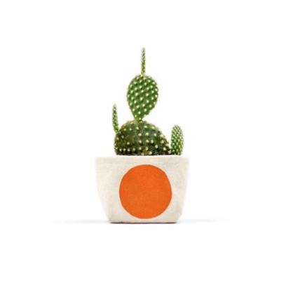 Orange Dot Canvas Planter 3""