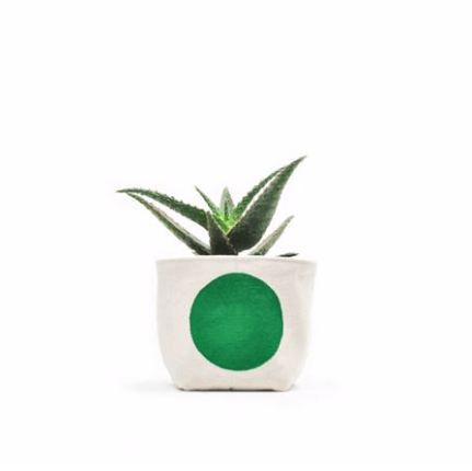 Green Dot Canvas Planter 3""