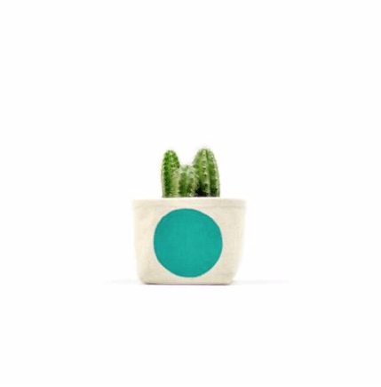 Turquoise Dot Canvas Planter 3""