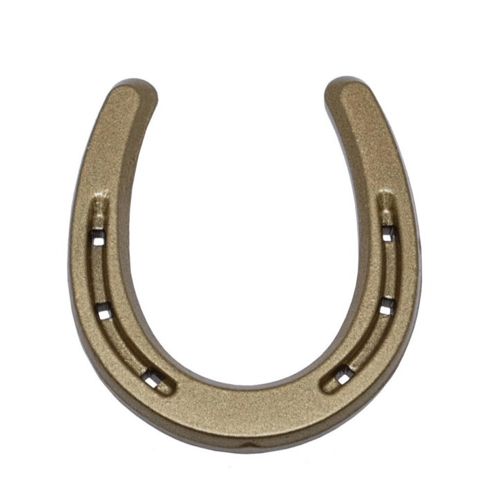 Lucky Gold Horseshoe Western Decor