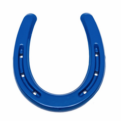 Lucky Blue Horseshoe Western Decor