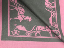 Horse and Carriage Scarf/Shawl