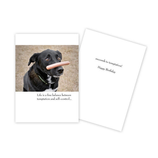 Notecard - Birthday - Black Lab with Hot Dog on his Nose - 0048