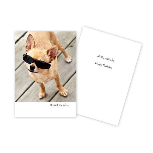 Notecard - Birthday - Dog with Sunglasses - 0059