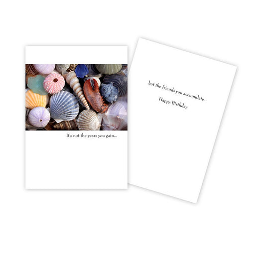 Notecard - Birthday - Shells - 0320