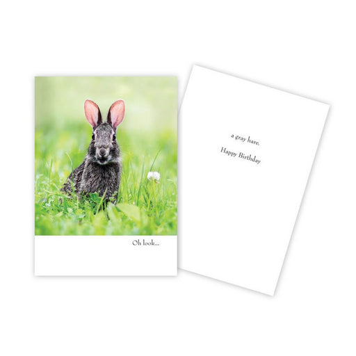 Notecard - Birthday - Bunny - 1081