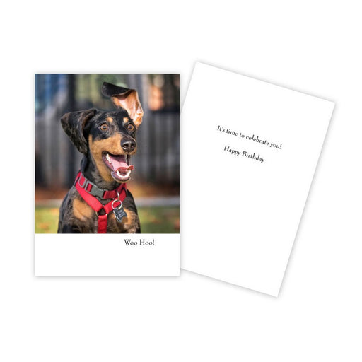 Notecard - Birthday - Barking Dog with Ear in Air - 1754