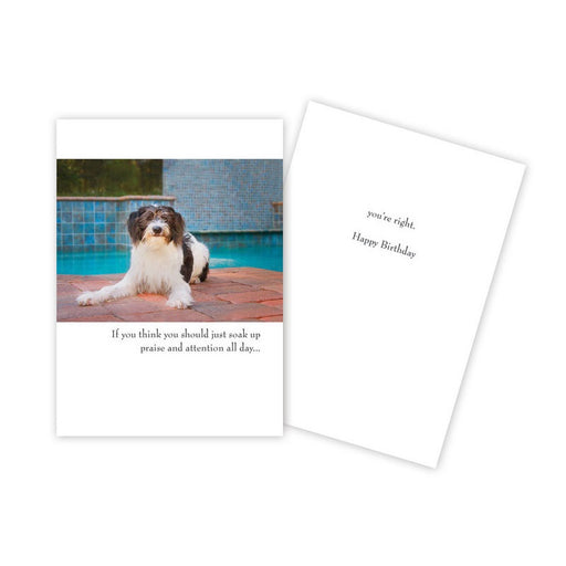 Notecard - Birthday - Dog at Pool - 1760