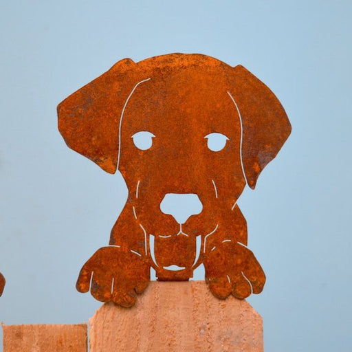 Sculpture - Dog Face - EGD