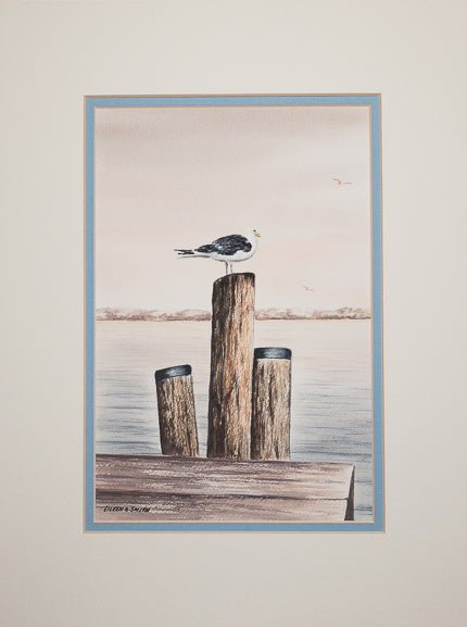 Original - 12x16 - Watercolor - Cape Cod Gull - Blue Matte
