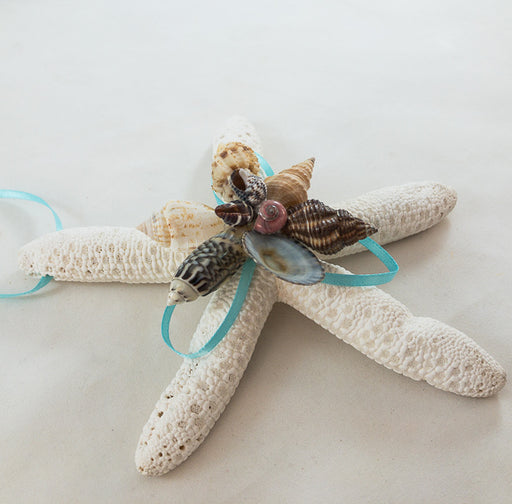 Ornament - Starfish with Shells