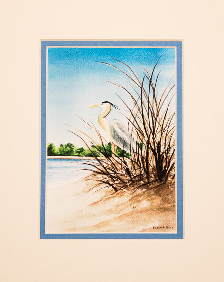 Print - 8x10 - Great Blue Heron in Sea Grass - Blue Matte