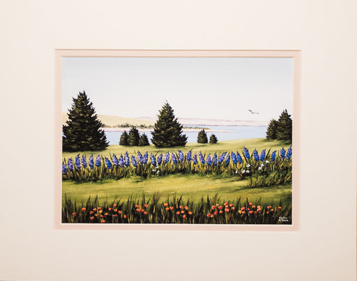 Print - 11x14 - Fort Hill Lupines #2 - Tan Matte