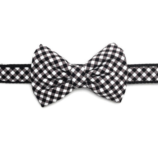 Dog Collar - Black Plaid - Large