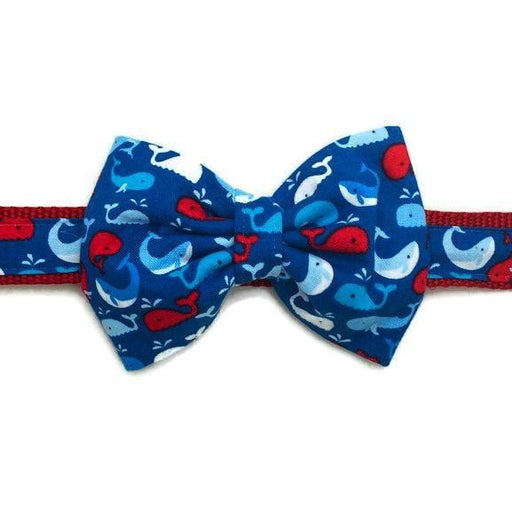 Dog Collar - Whales Bow Tie - Medium