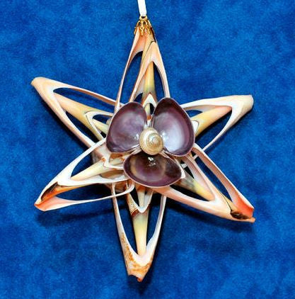 Ornament - Cut Shell Star - Purple