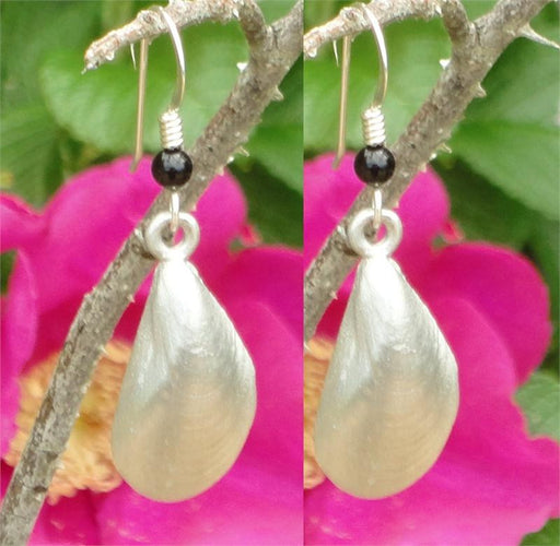 Earrings - Mussel Charm