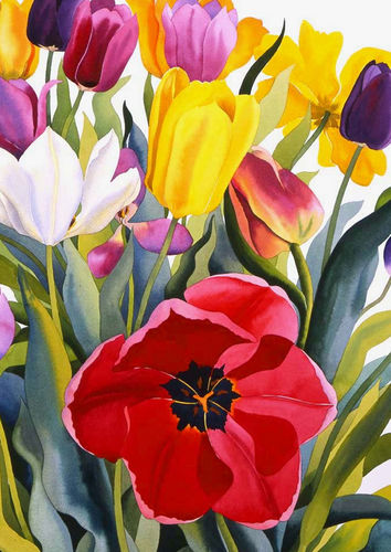House Flag - Tulip Garden  - 109601