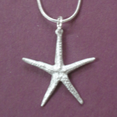 Necklace - Small Starfish