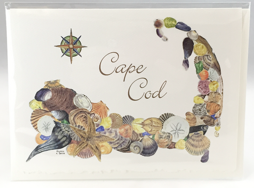 Notecard - Cape Cod Shells - White
