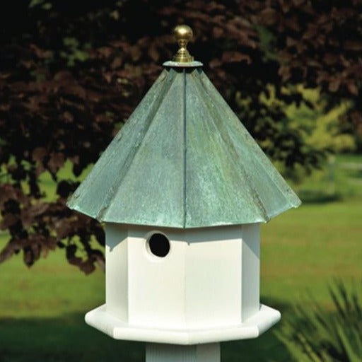 Bird House - Oct-Avian
