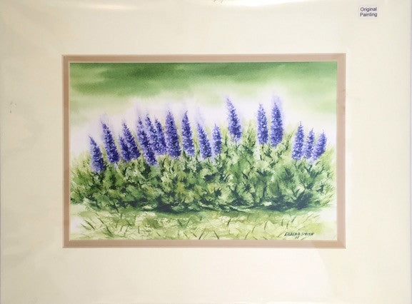 Original - 12x16 - Watercolor - Lupines - Tan Matte