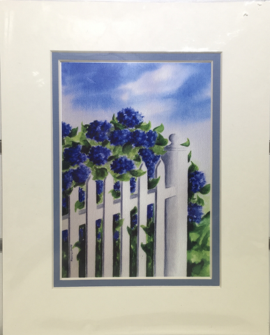 Print - 8x10 - Hydrangea Picket Fence - Blue Matte