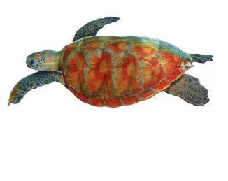 Sea Turtle - NI