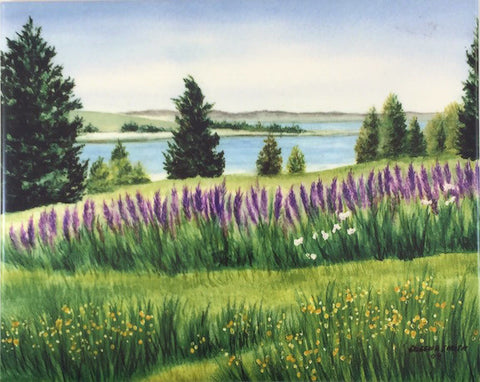 Tile - Fort Hill Lupines