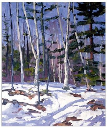 Gift Enclosure Card - Winter Birches - 132