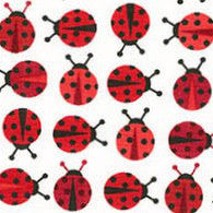 Baby Shoes - 0-6 months - Ladybugs