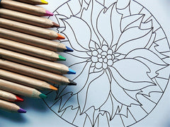 coloring as a hobby for a happier life