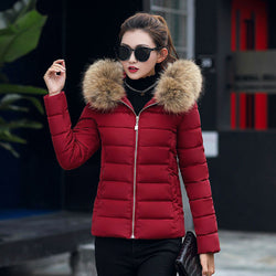 Fashion Women Winter Casual Jacket  Raccoon Fur Overcoat