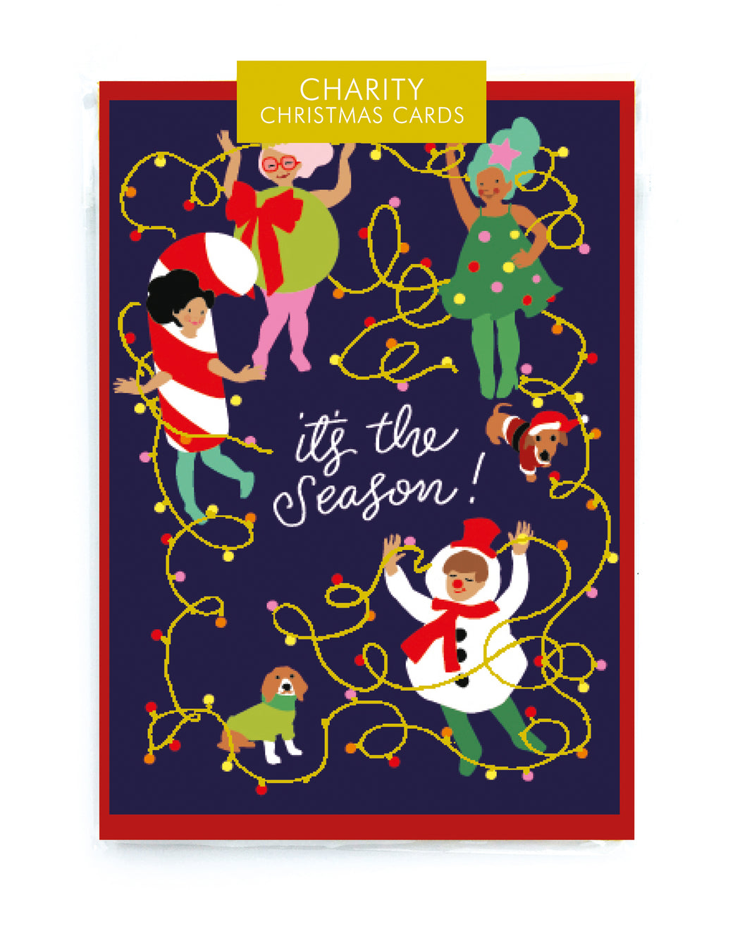 Set of 5 Charity Christmas Cards - LilyKing