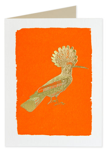 Hoopoe Bird Card - LilyKing